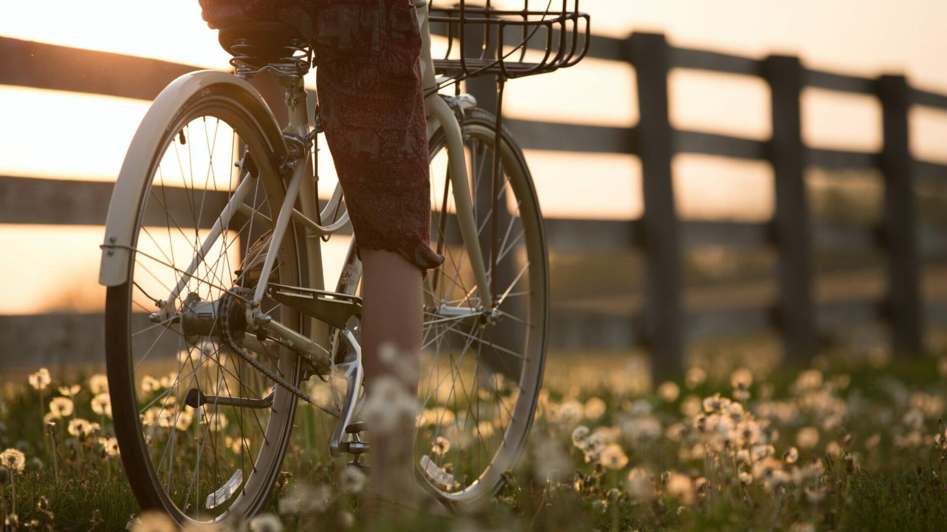hofgut-apartment-lifestyle-resort-wagrain-erlebenimhofgut-aussenanlage-fahrradverleih